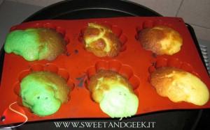 sweetandgeekalbero02